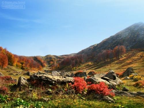 Республика Абхазия - часть 2