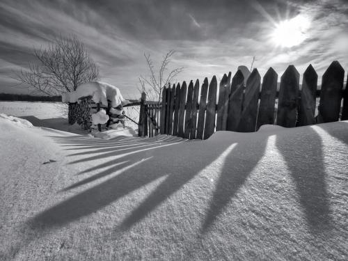 Мир в Фотографии - World In Photo 458 (60 картинок)