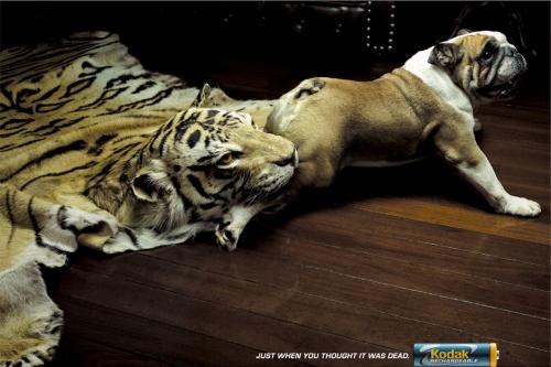 Сборник шедевров рекламного постера №2 (52 картинок)
