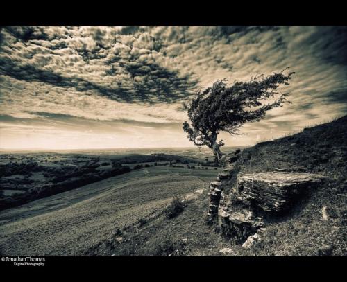 Мир в Фотографии - World In Photo 460 (50 картинок)