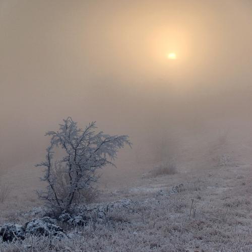 Фотограф Юрий Коваленко (74 картинок)