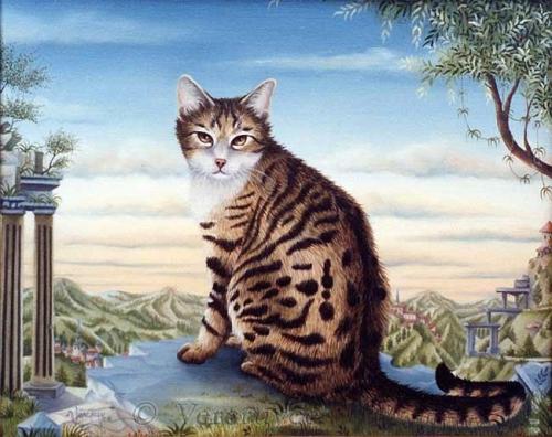 Кошачий мир Bernard Vercruyce (126 картинок)