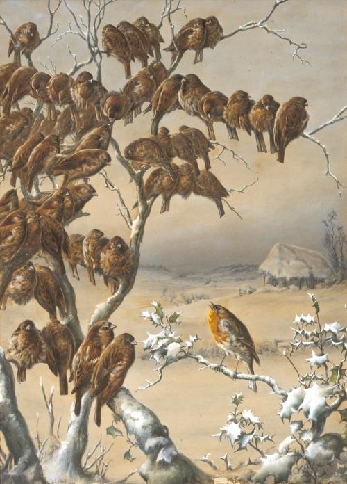 Harry Bright (British, 1846-1895) (37 работ)