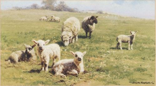 David Shepherd (b.1931) (116 картинок)