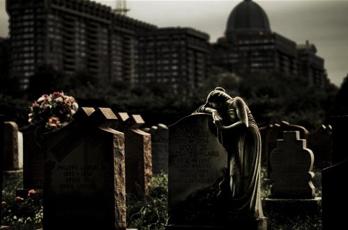 Фотограф Julien Coquentin (94 картинок)