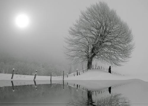 Отличная фотоподборка. Creative edit №3 (40 картинок)