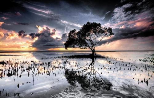 Мир в Фотографии - World In Photo 455 (60 картинок)