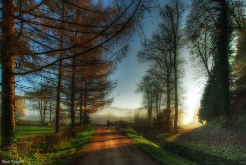 Мир в Фотографии - World In Photo 454 (60 картинок)