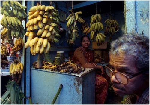 Фотожурналист Сергей Максимишин. Индия. Гоа в синем (12 картинок)