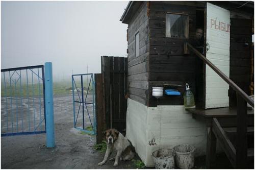 Фотожурналист Сергей Максимишин. Камчатка (32 картинок)