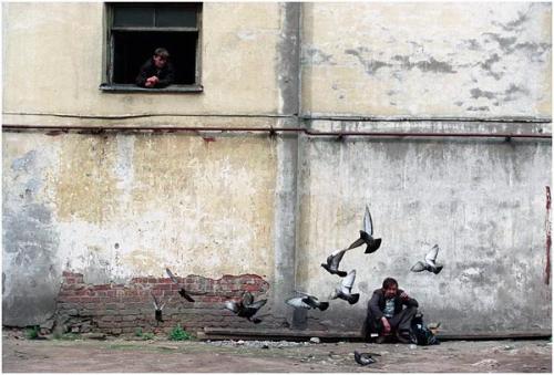 Фотожурналист Сергей Максимишин. Петербург. Колодцы (13 картинок)