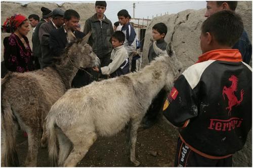 Фотожурналист Сергей Максимишин. Узбекистан (45 картинок)