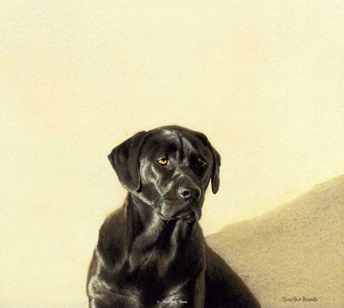 Американская художница Sueеllen Ross (74 картинок)