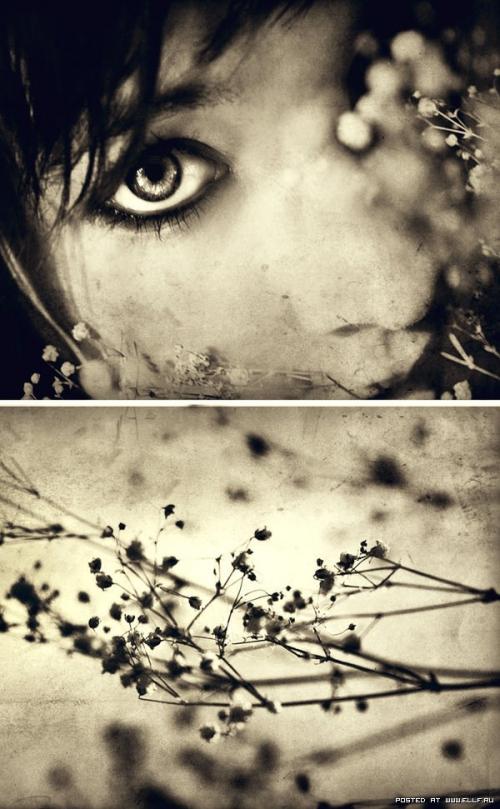 Великолепные работы фотографа Кейтлин Уортингтон (55 картинок)
