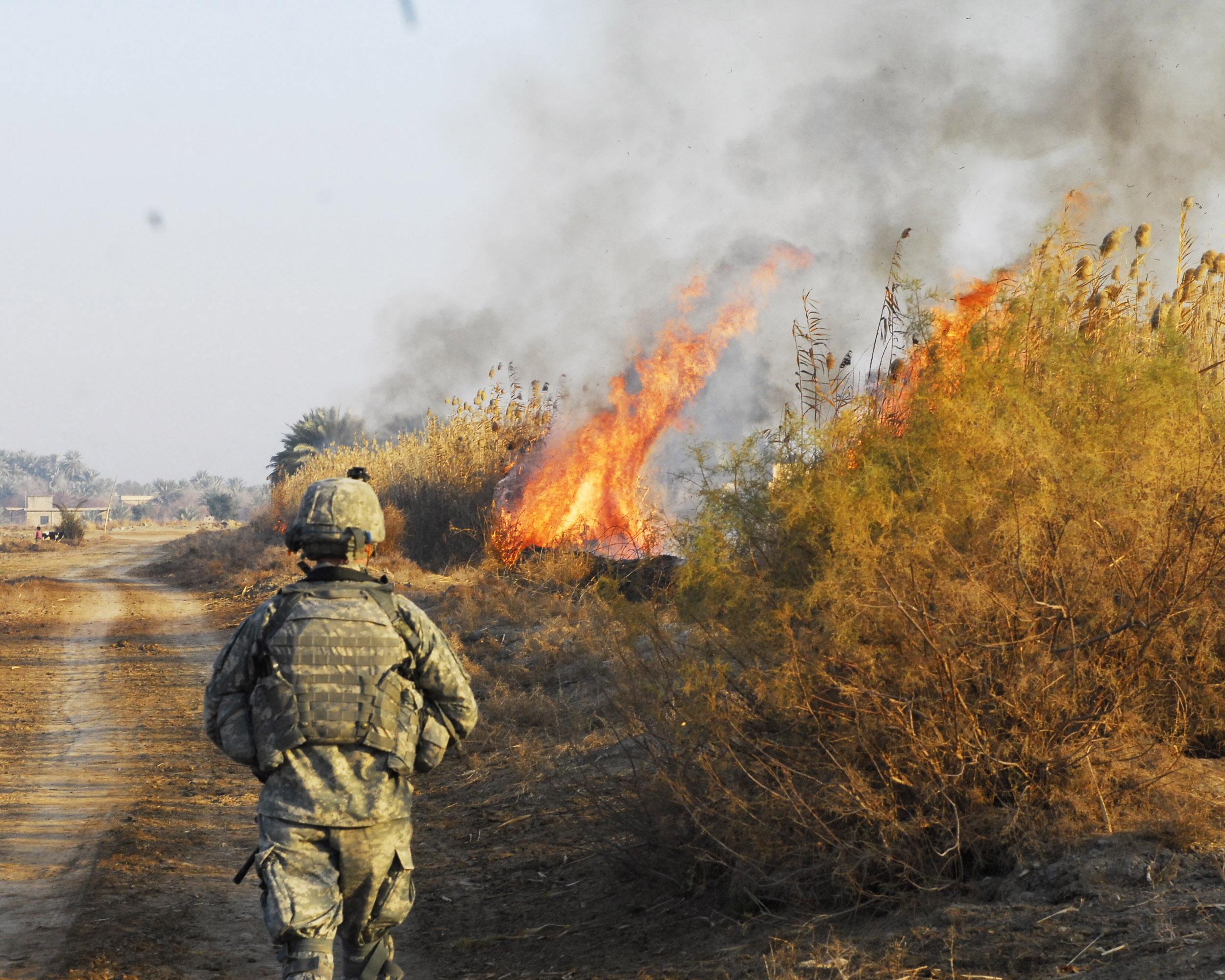 recalling war vs mental cases essay