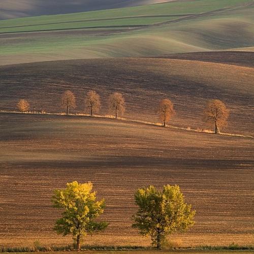 Работы фотографа Marek Kiedrowsk (Избранное) (47 работ)