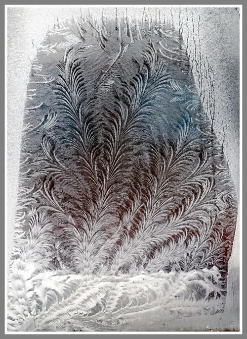 Макро от Андрея Осокина. Старые и новые работы (160 обоев)