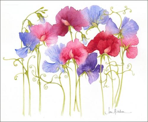 Цветочки Джен Харбон (80 работ)