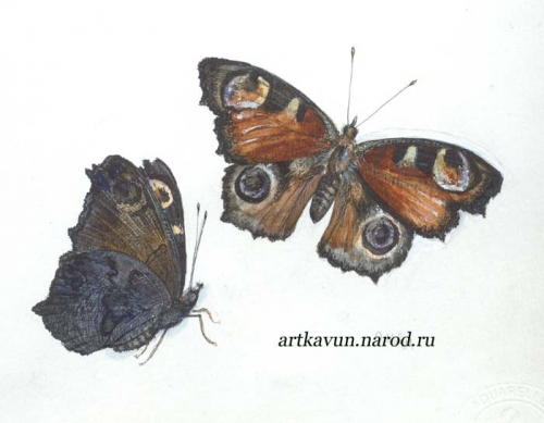 Художник Ольга Кавун (118 работ)