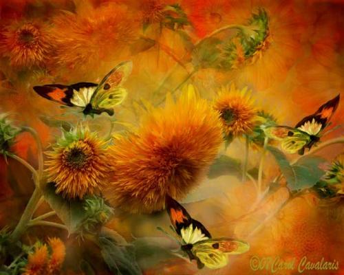 http://nevsepic.com.ua/uploads/posts/2011-05/thumbs/1306778398_www.nevsepic.com.ua_01_sunflowers_pic.jpg