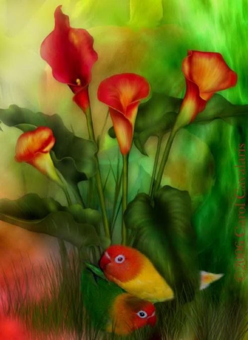 http://nevsepic.com.ua/uploads/posts/2011-05/thumbs/1306778428_www.nevsepic.com.ua_04_loveamongthelillies_pic.jpg