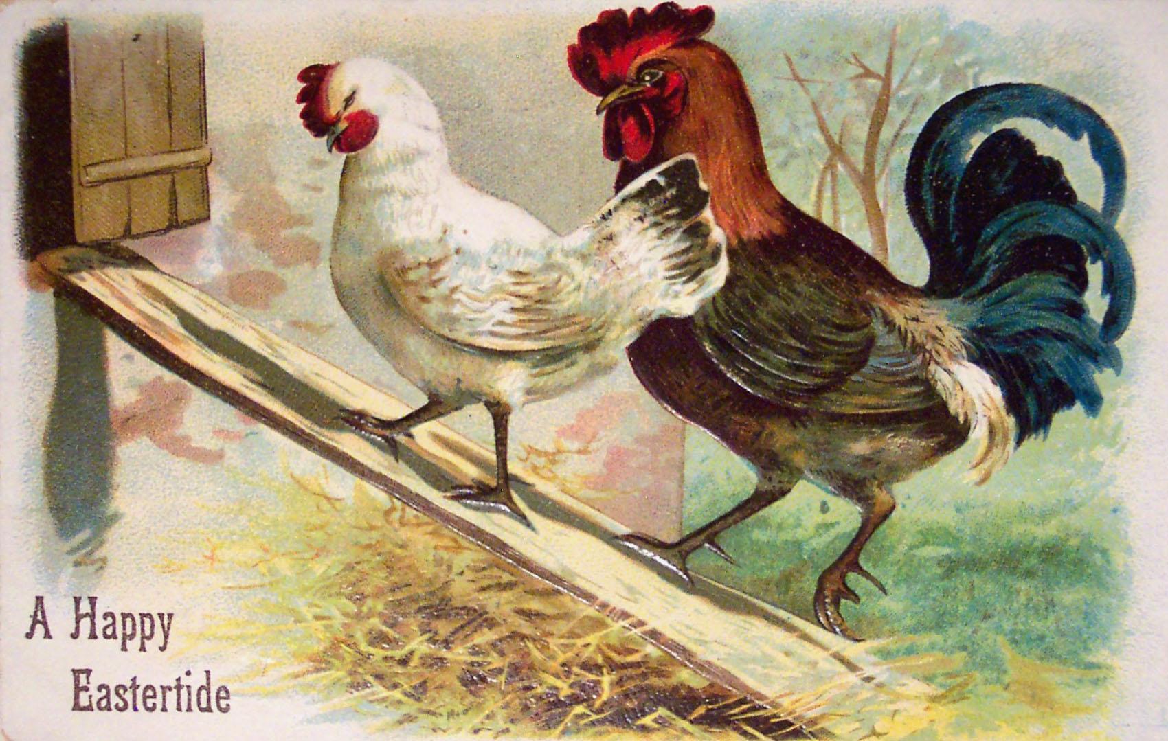Старинная открытка петух