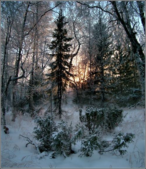 Работы фотографа Сергея Вагаева (99 фото)