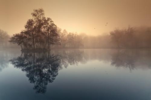 Работы фотографа Adam Dobrovits (81 фото)