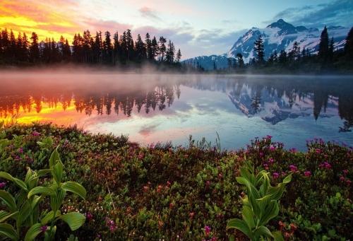 Мир в Фотографии - World In Photo 470 (60 фото)