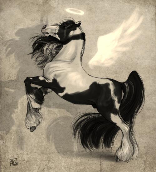 Работы Monika Kodrzycka (183 работ)