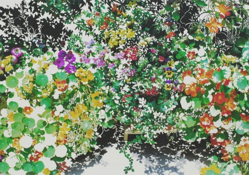 Уникальные работы Shu Ikeda (15 работ)