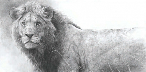 Анималистическая живопись Роберта Бейтмена (686 работ)