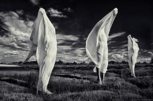 Фотограф Денис Богомолов.Старые и новые работы   DENIS BOGOMOLOV (Doberman) (160 фото)