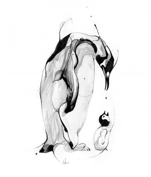 Иллюстратор и графический дизайнер Alexis Marcou (84 работ)