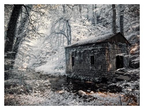 Фотограф Мария Нецунски. Старые и новые работы | Maria Netsounski (bulka) (213 фото)