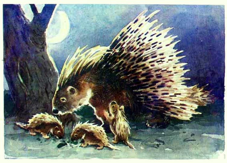 发一套儿童书籍可爱的小动物插画