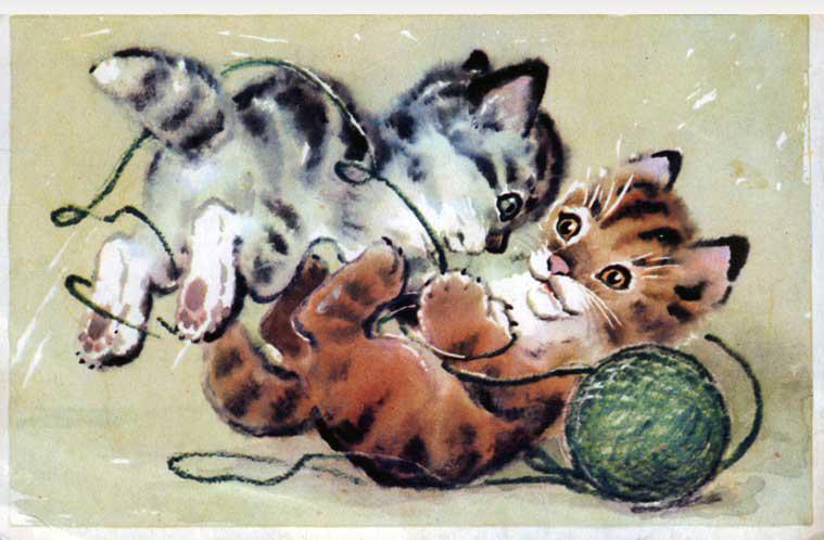 爱的小动物插画