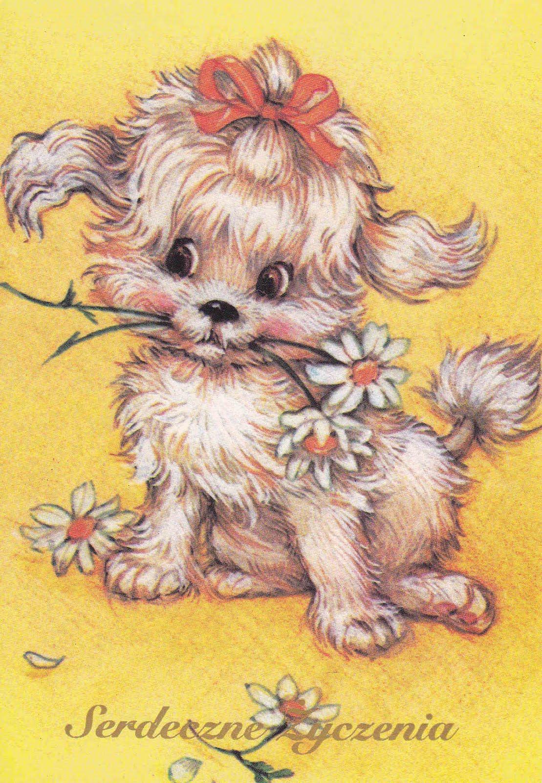 Милые открытки с собачкой