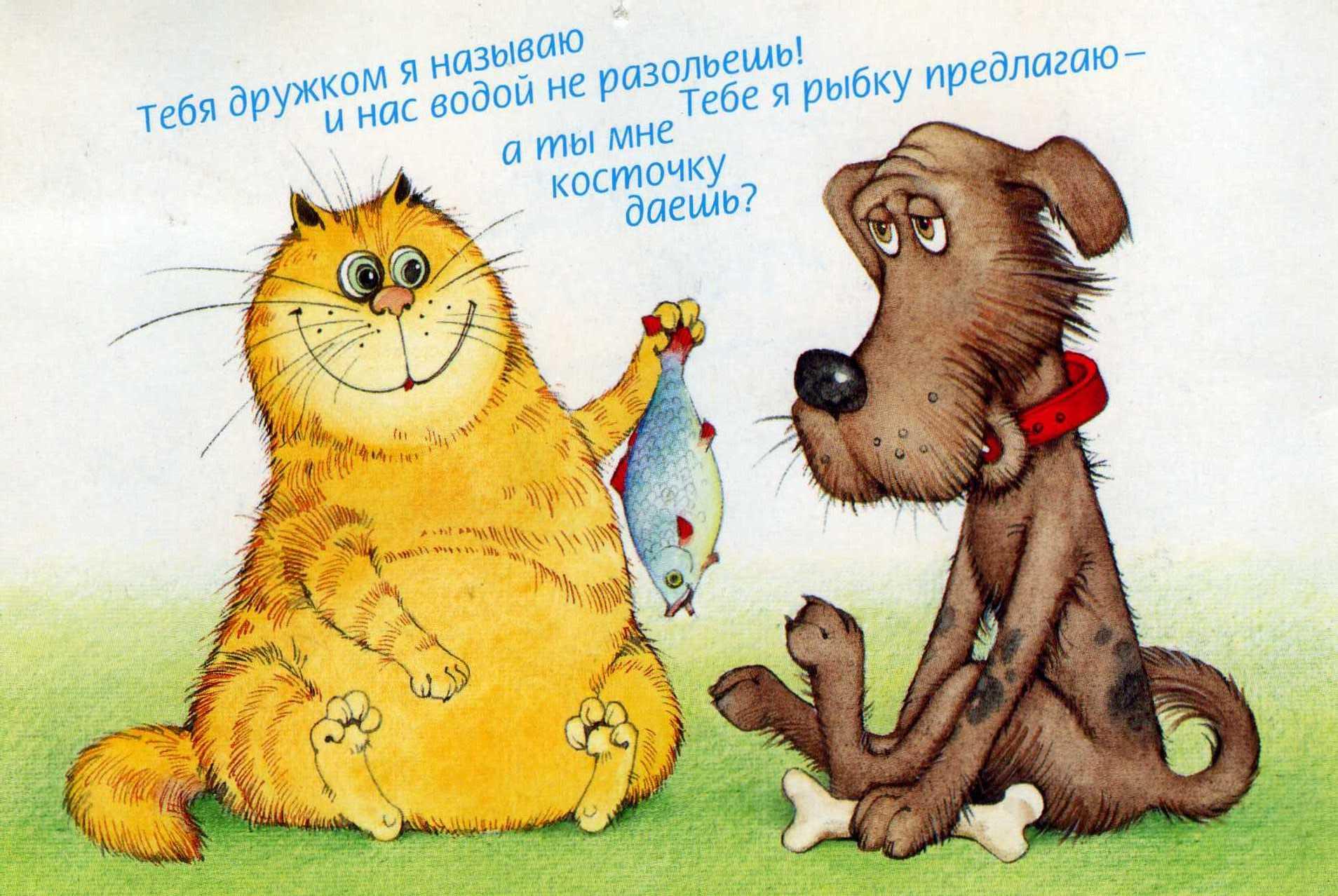 Смешные весёлые открытки 82