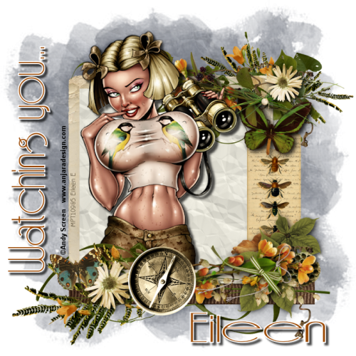 Pin-Up Collection by Andy Screen (47 работ)