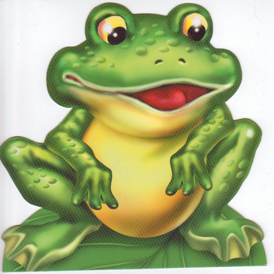 Картинка лягушки для детей из сказки теремок на белом фоне