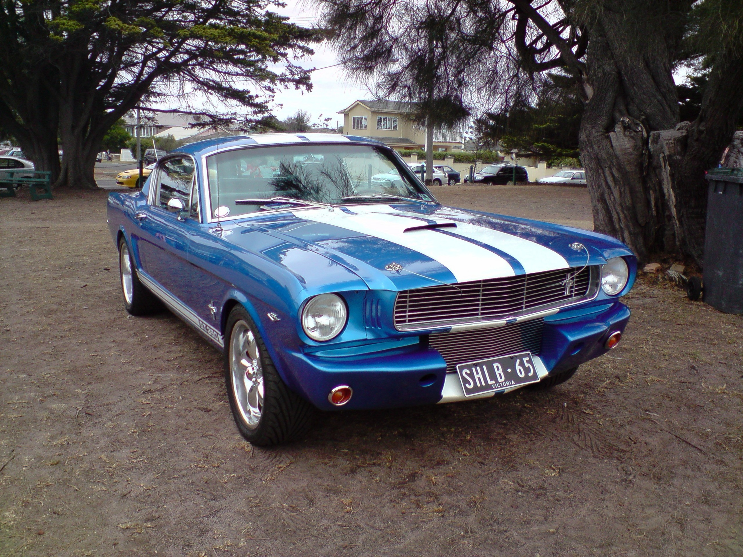 Great Www American Muscle Cars Com Pictures Inspiration - Classic ...
