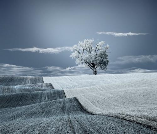 Фотограф Caras Ionut (Кара Ионат) (50 фото)