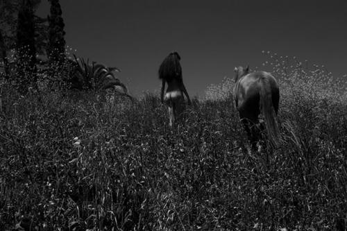 Фотограф Дебора Андерсон (47 фото)