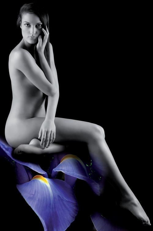 Emme Elle - Official Calendar 2011 (24 фото + 1 pdf)