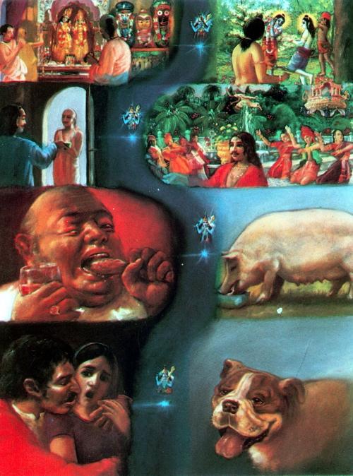 Роберт Бейтман - канадский художник и натуралист (59 работ)