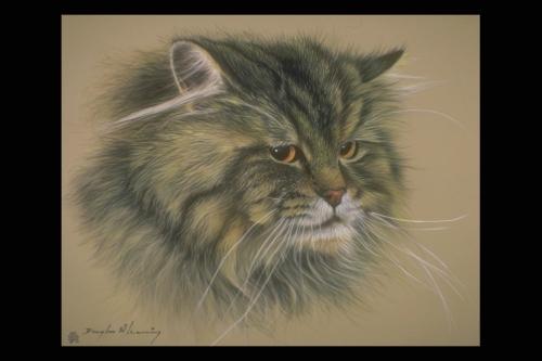 Мир животных глазами художника (17 работ)