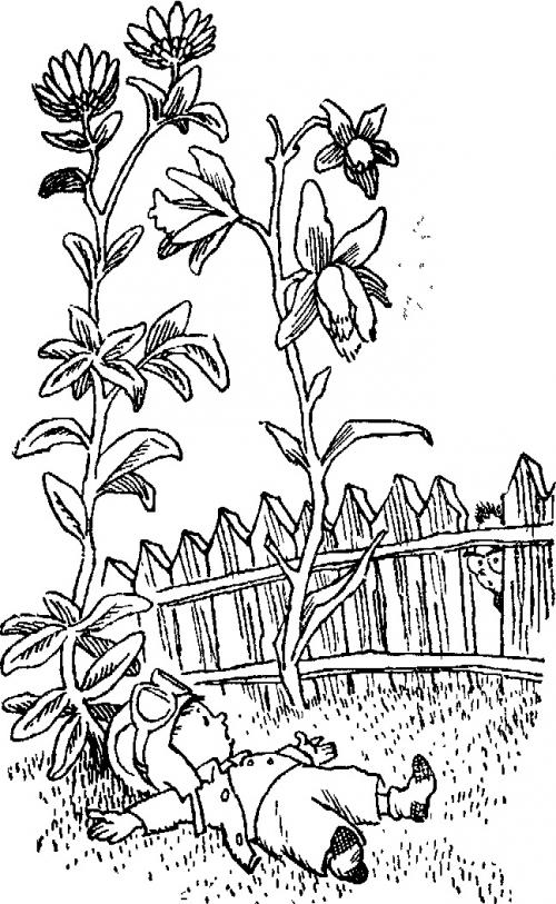 Иллюстратор Генрих Оскарович Вальк (420 работ)