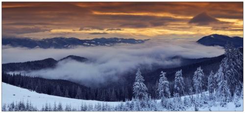 Мир в Фотографии - World In Photo 502 (60 фото)