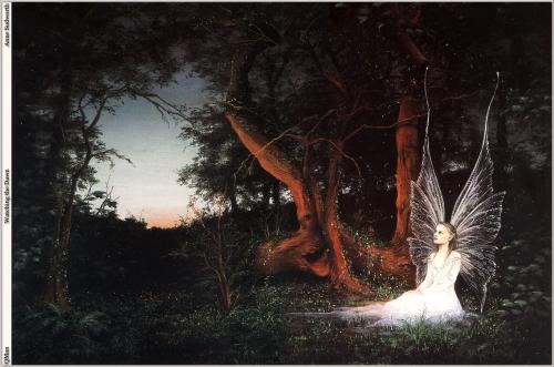 Работы Anne Sudworth (50 работ)